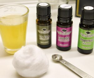 Essential Oils for Poison Ivy, Poison Oak, and Sumac