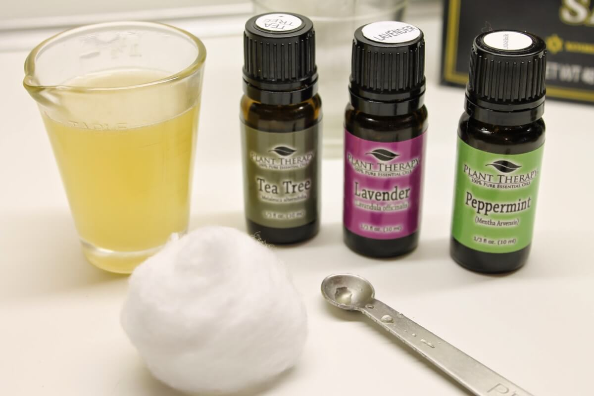 Essential Oils for Poison Ivy, Oak, and Sumac - Natural ...