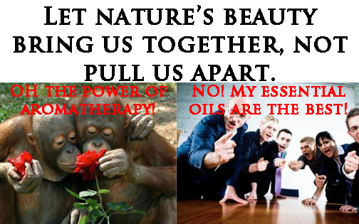 nature bring us together photo
