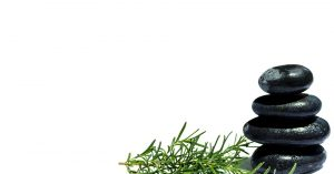 Feature Friday: Rosemary Essential Oil