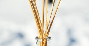 PLant Therapy Essential Oil Diffuser Reeds