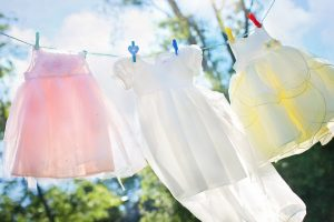 Plant Therapy Fabric Softener DIY