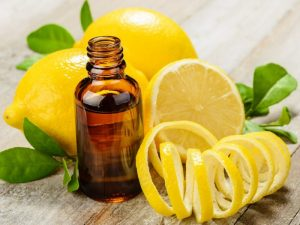 Importance of the Latin name (and chemotypes) Lemon & Essential Oil Bottle
