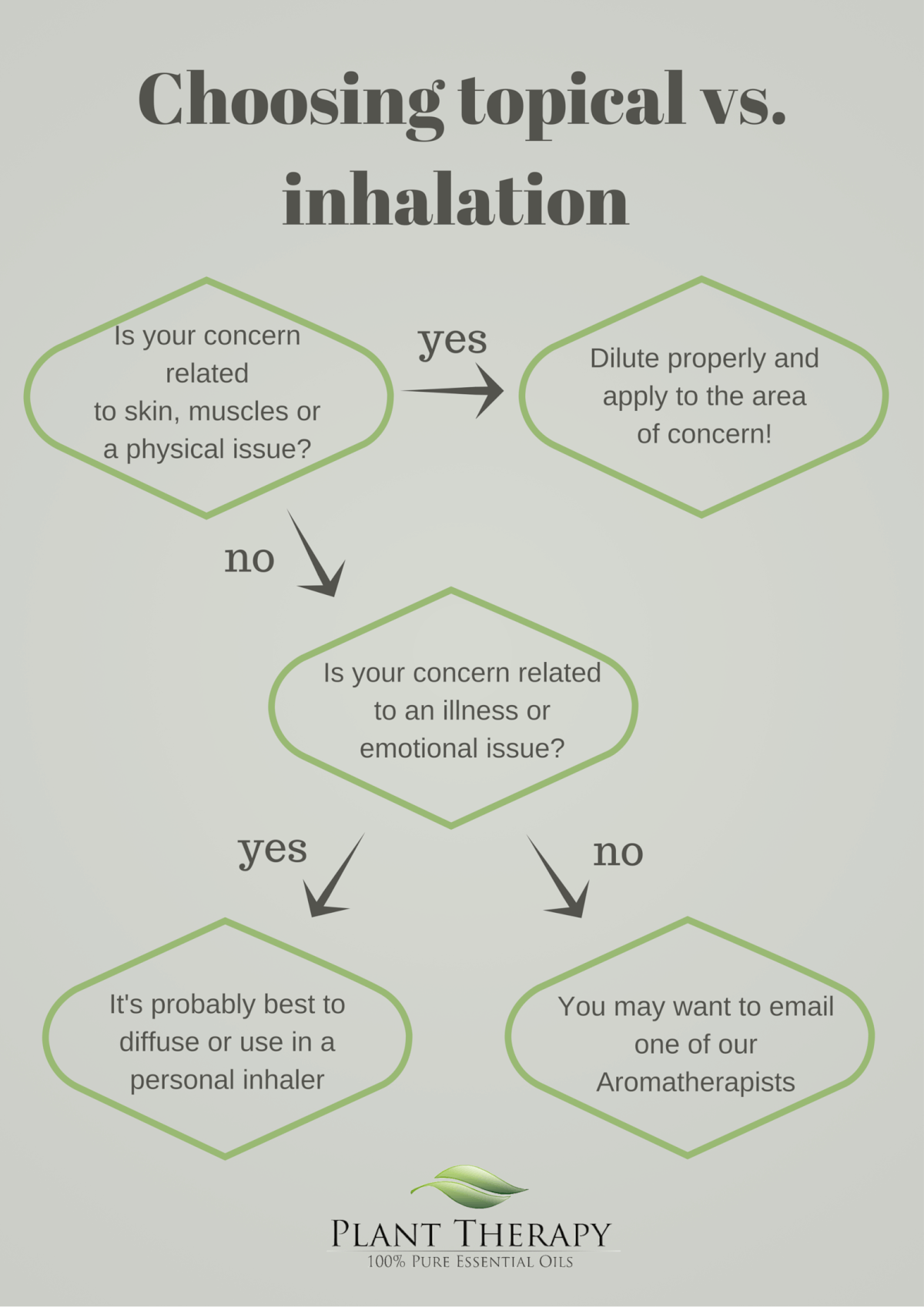 Plant Therapy Choosing Topical Application vs Inhalation