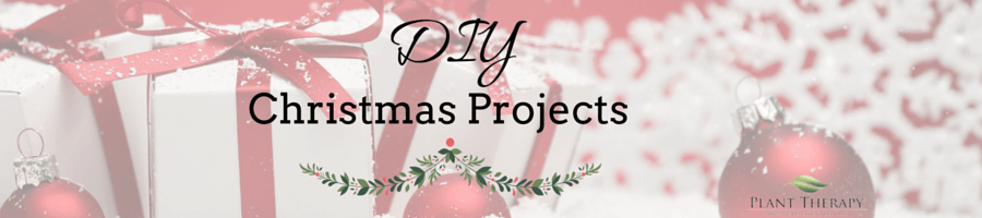 Plant Therapy DIY Christmas Project Kitchen Drain Refresher