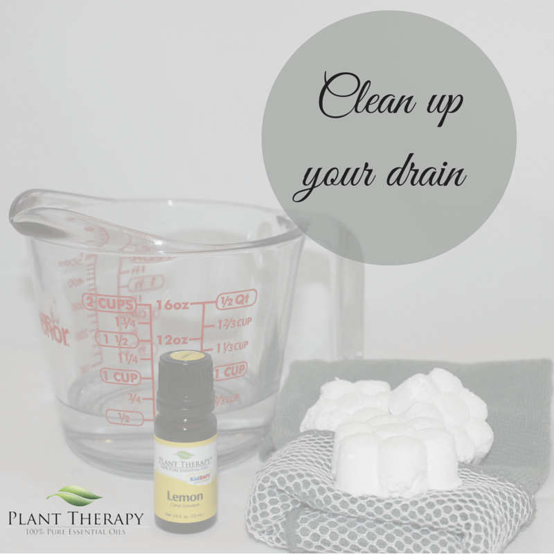 Plant Therapy DIY Christmas Project Kitchen Drain Refresher with Lemon Essential Oil