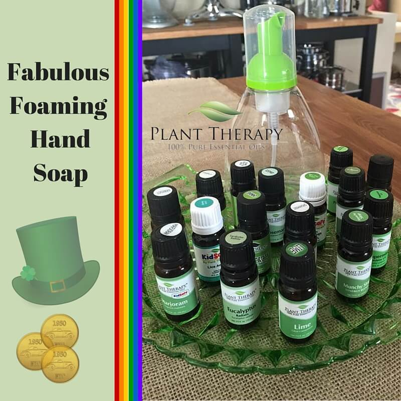 Fabulous Foaming Hand Soap - Naturally Blended