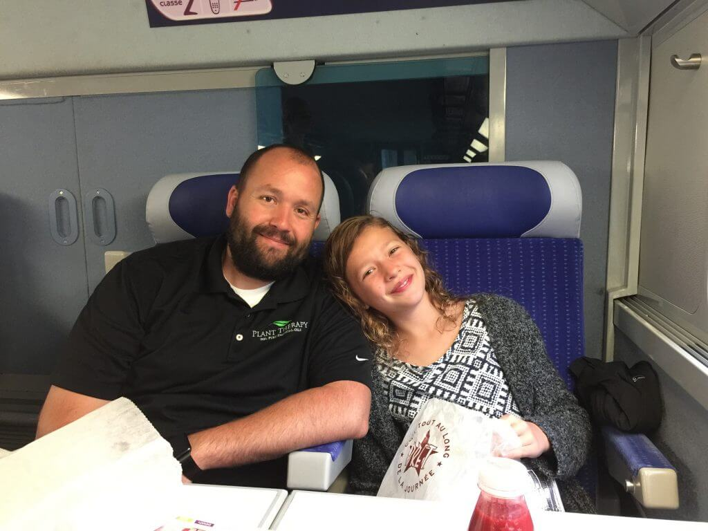 High Speed Train in France