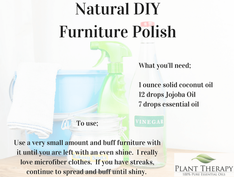 furniture-polish plant therapy