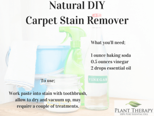 The Best Homemade Cleaning Products Plant Therapy Blog