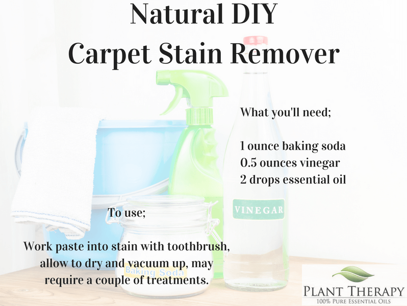 carpet-stain-remover plant therapy