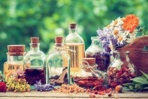 Plant Therapy Basic Blending Personalized Essential Oil Blends DIY