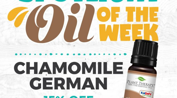 Chamomile German Essential Oil Spotlight of the Week