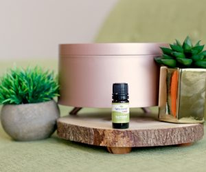 July Essential Oil of the Month: Sea Fennel