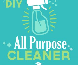 Plant Therapy Essentials: All Purpose Cleaner DIY