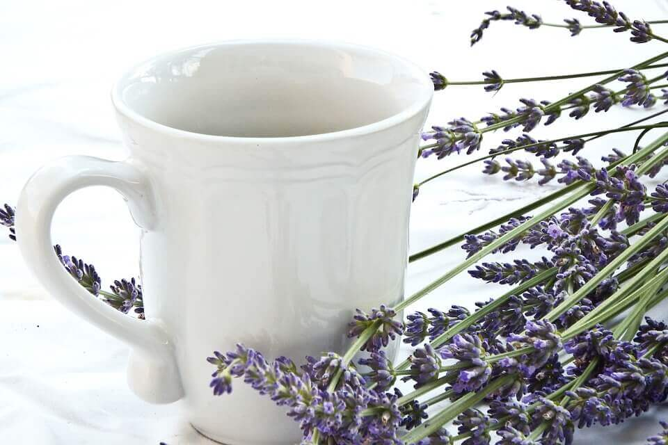 use lavender on minor cuts and burns