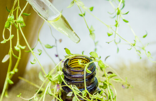 how to make thymol oil