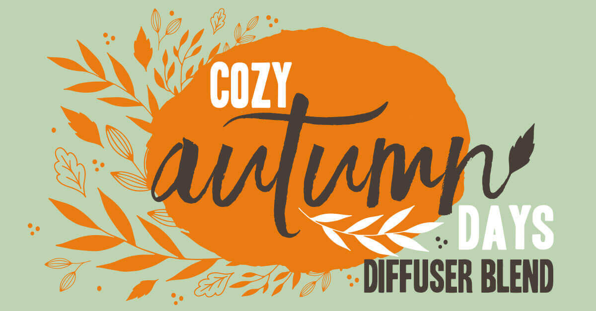 cozy autumn days diffuser blend