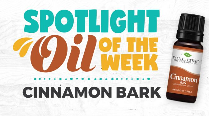 Cinnamon Bark Essential Oil Spotlight of the Week