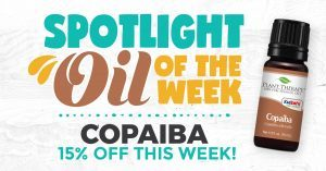 Copaiba Oleoresin Plant Therapy Spotlight Oil of the Week