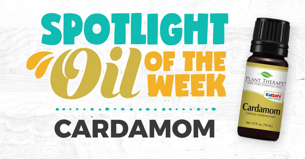 Cardamom Essential Oil Benefits How To Use A Diy