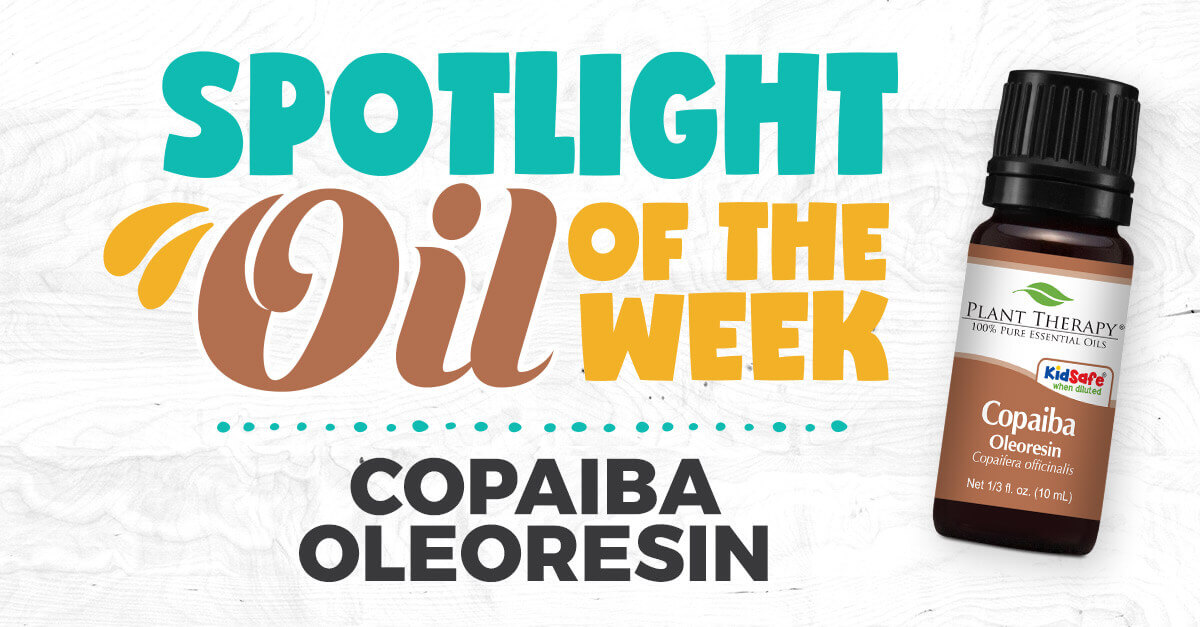 Copaiba Oleoresin Essential Oil Benefits & Uses