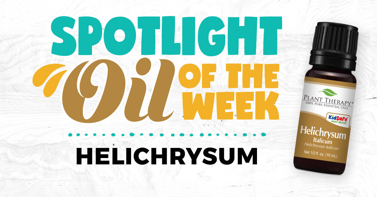 Helichrysum Italicum spotlight oil of the week