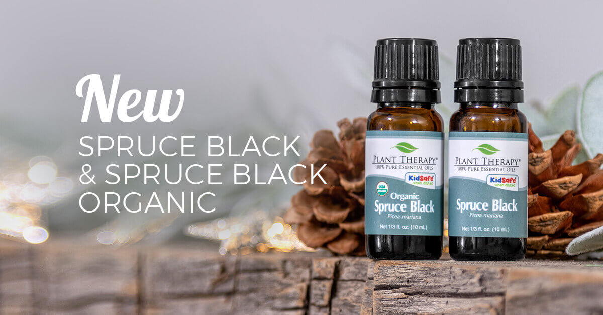 New Spruce Black & Spruce Black Organic Essential Oils are at Plant Therapy