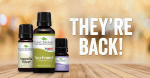 Oil of the Month favorites are HERE!