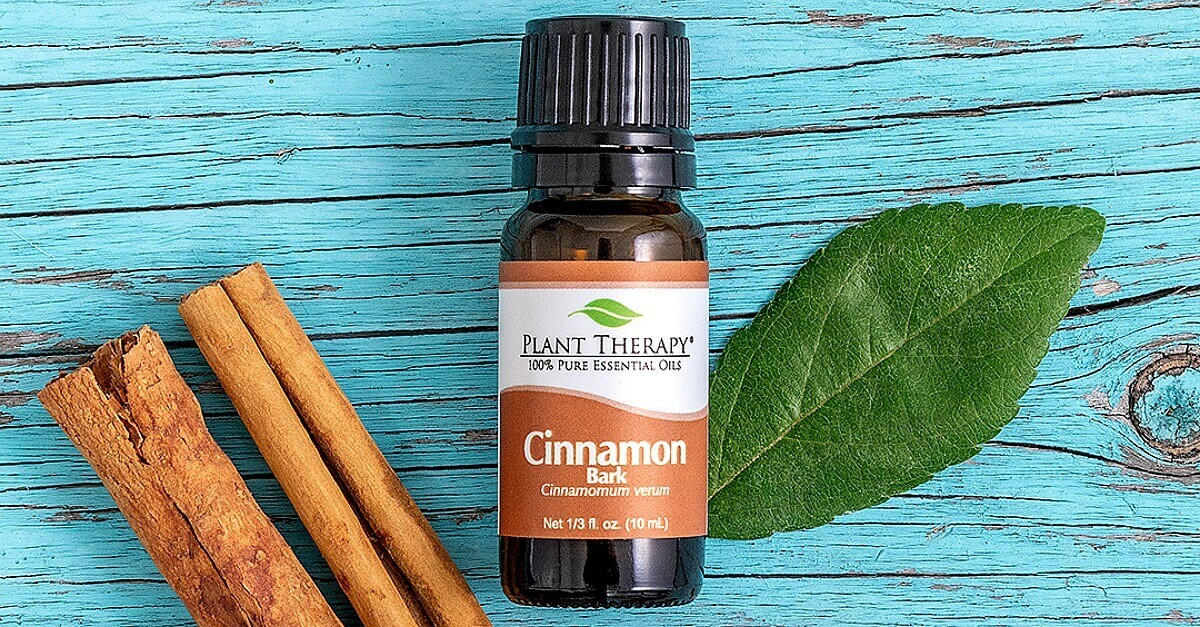 cinnamon essential oil with cinnamon sticks gift guide