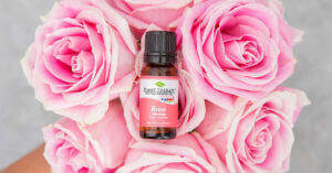 Plant Therapy Rose essential oil