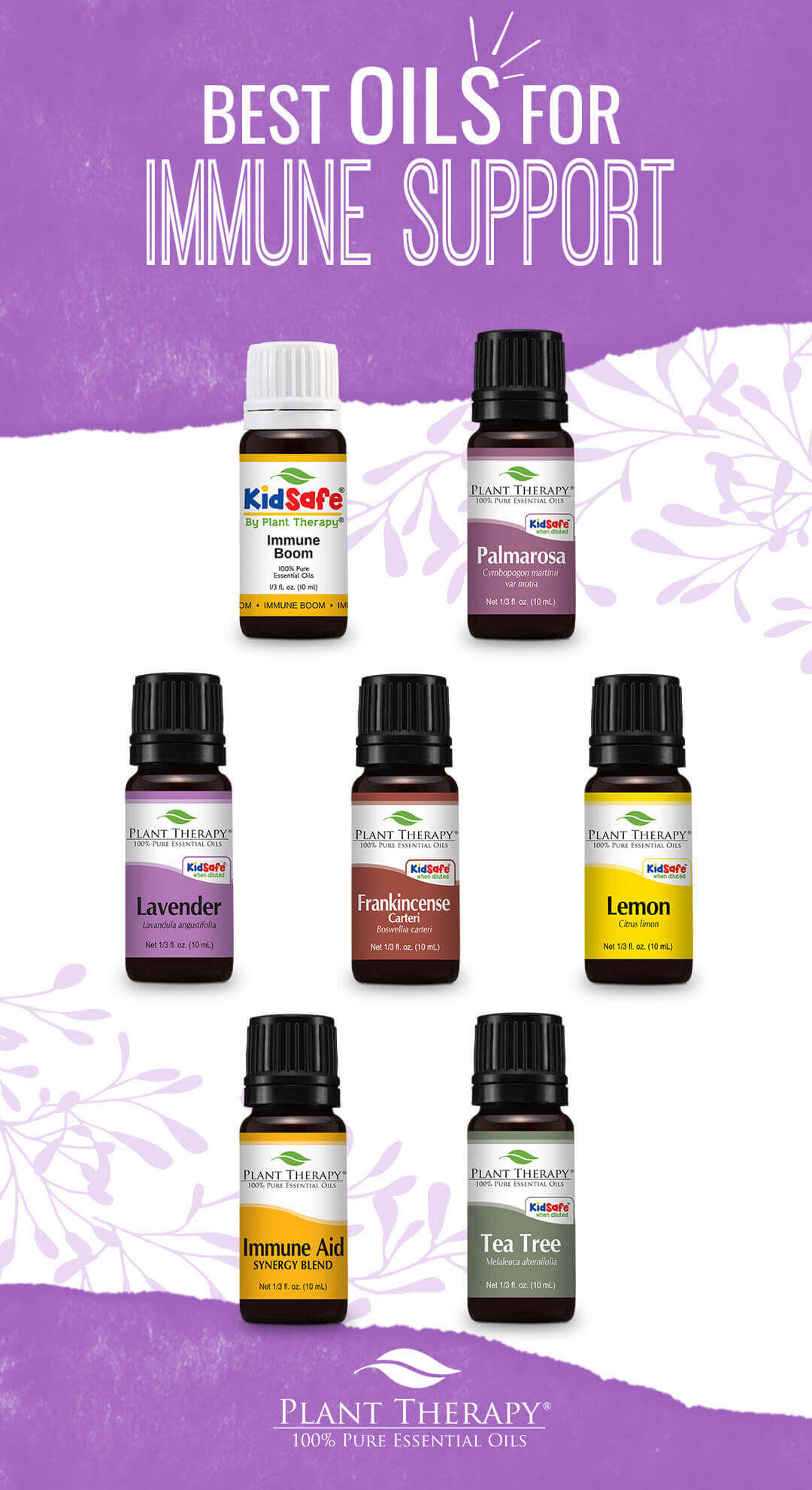 plant therapy best oils for immune support lavender lemon tea tree