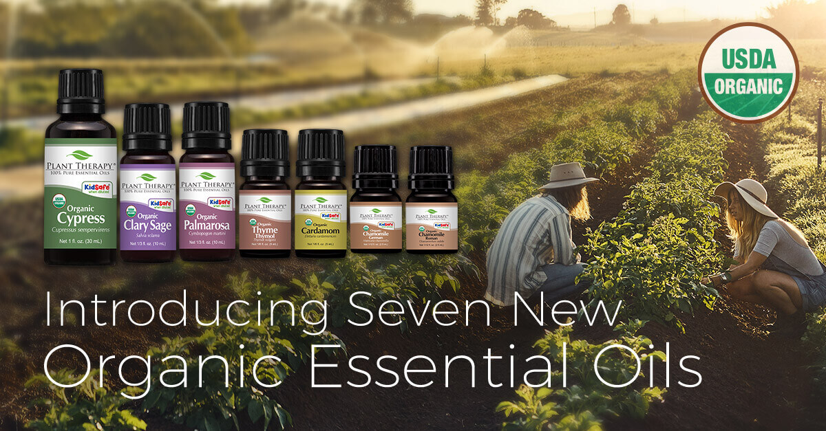 Plant Therapy picking herbs new organic essential oils