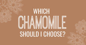 Chamomile Essential Oils: Learn the Difference
