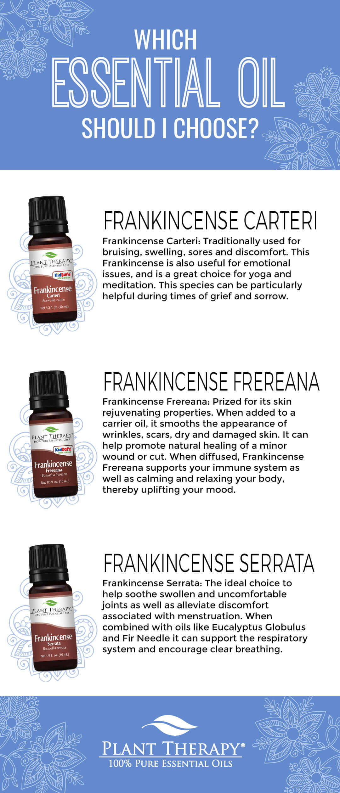 Which Frankincense Essential Oil Should I Choose? Plant therapy