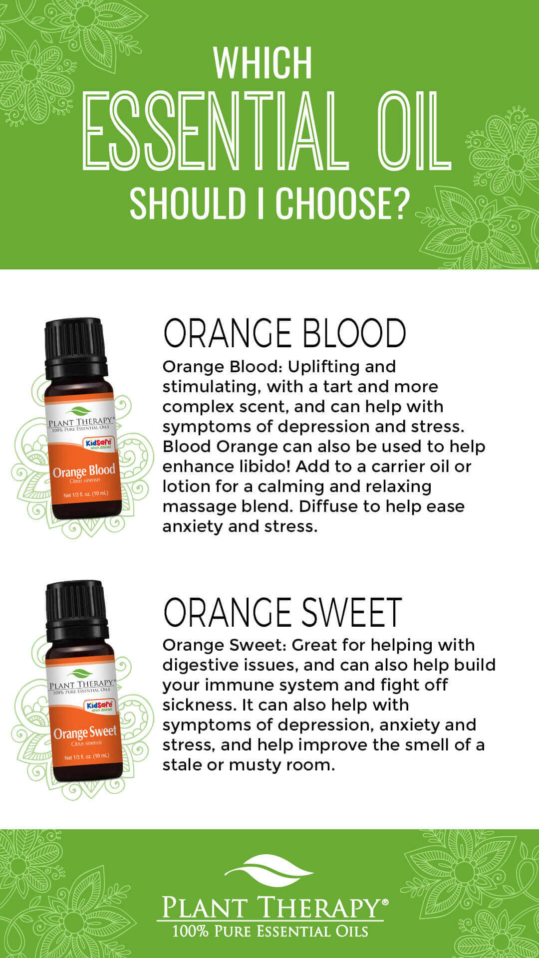 12 Essential Oils You Need for a Cozy Home This Holiday Season