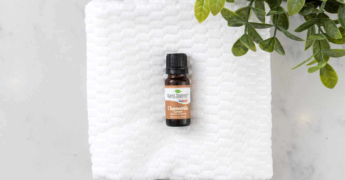 chamomile on a towel gift guide