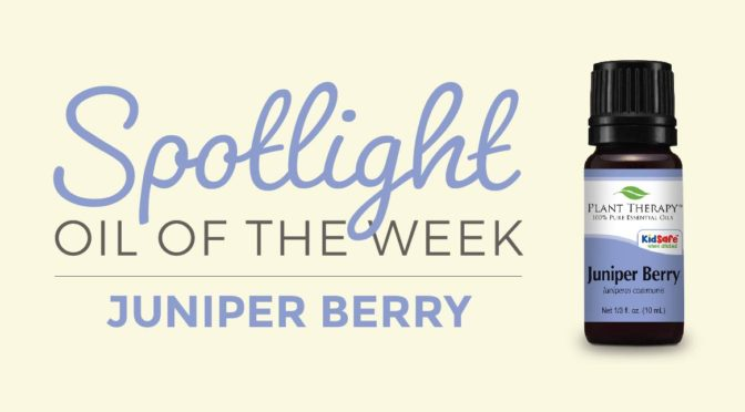 plant therapy essential oil spotlight of the week Juniper Berry