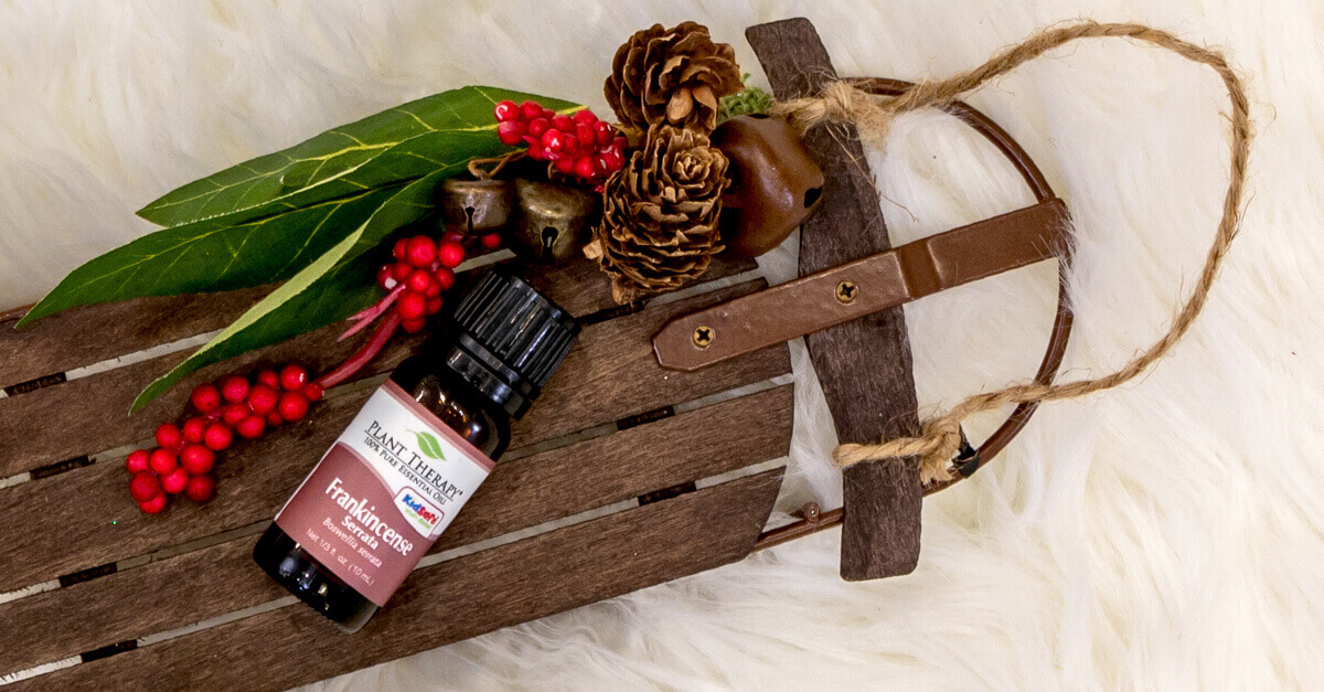 Frankincense serrata essential oil on small wooden sled