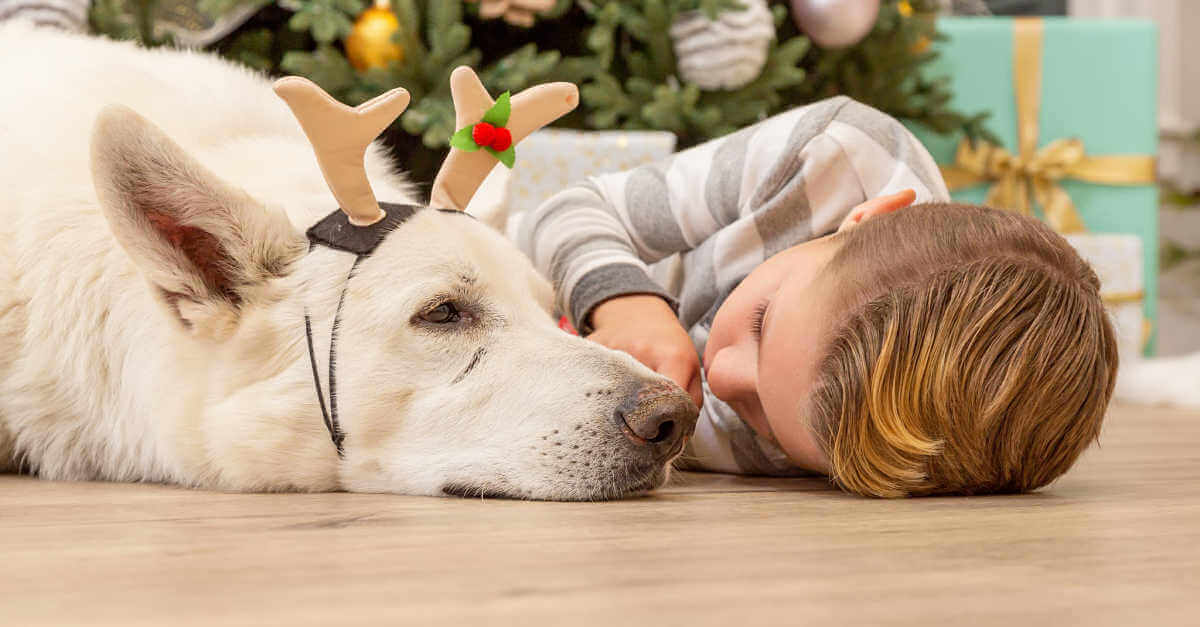 plant therapy holiday little boy and dog snuggling