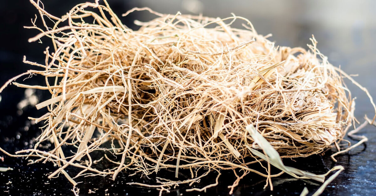 dried vetiver roots