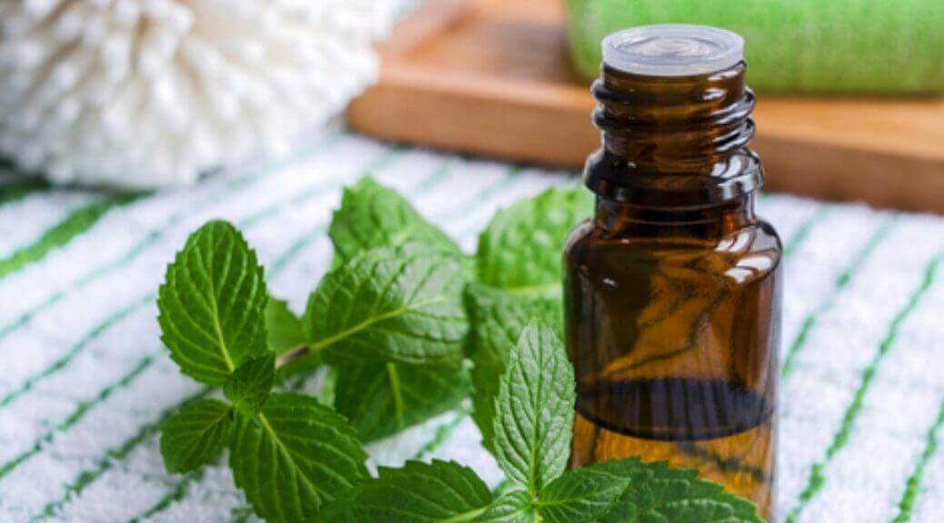 Mint next to a bottle of essential oil