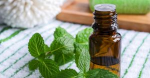 Six Ways to Use Spearmint Essential Oil