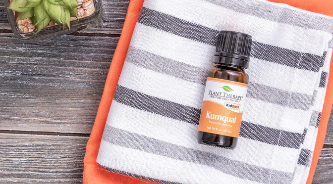 kumquat essential oil from plant therapy