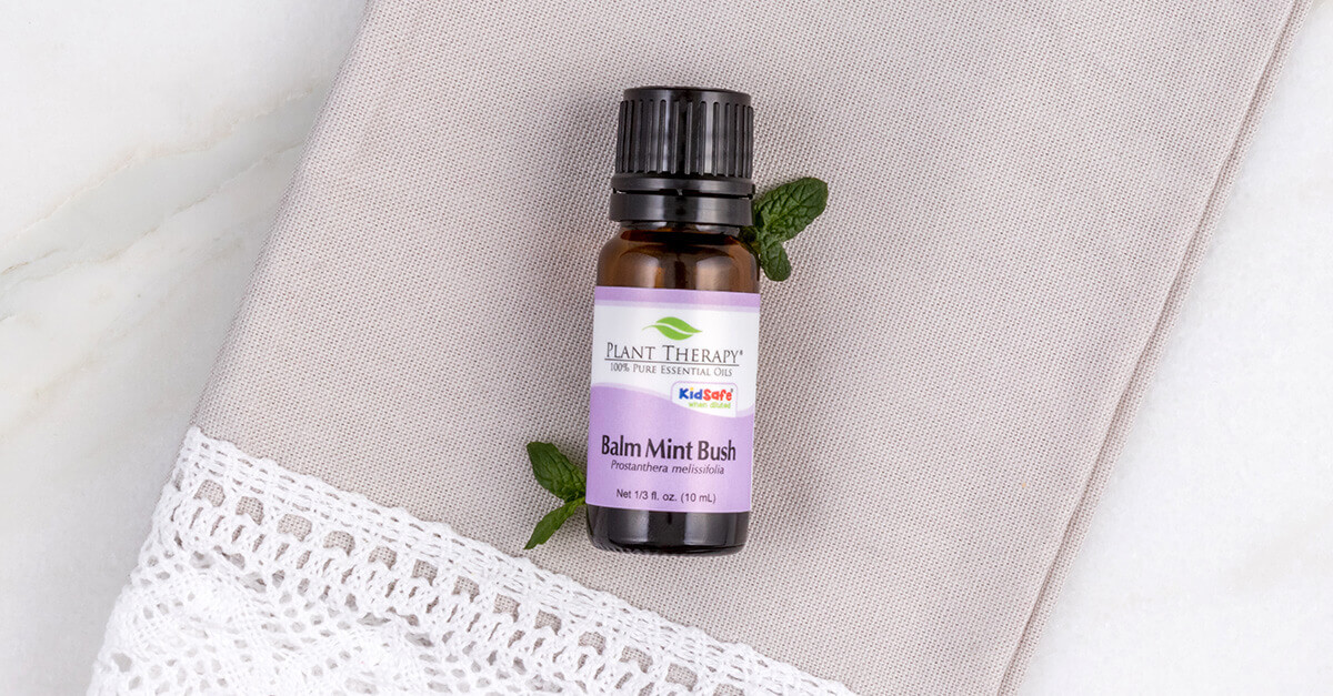 Balm Mint Bush Essential Oil