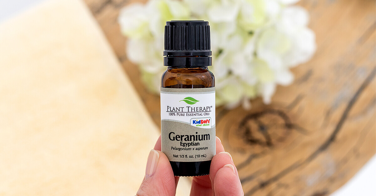 Geranium Egyptian Essential Oil Plant Therapy