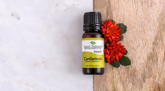 Essential Oil Education: Cardamom