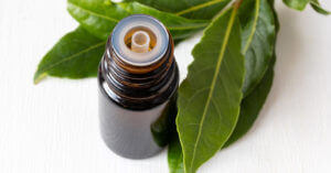 Can essential oils be ingested?