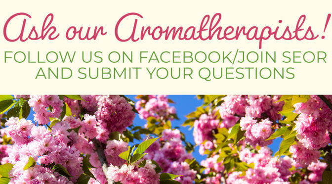 Ask an aromatherapist plant therapy essential oil