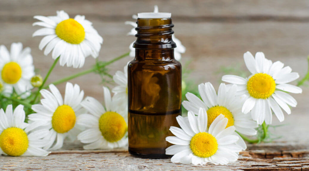 essential oil bottle surrounded by white flowers